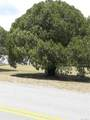 1706 Beside Old Floral City Rd - Photo 5
