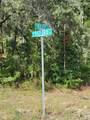 2579 Riley Drive - Photo 8