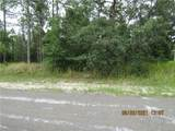 3502 Brazilnut Road - Photo 1