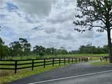 4015 Tomahawk Drive - Photo 12