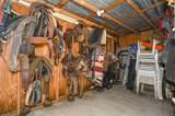 3480 Woodthrush Street - Photo 17