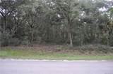 11999 Fig Tree Lane - Photo 3