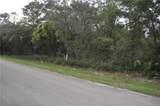 11999 Fig Tree Lane - Photo 4