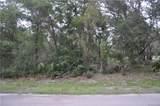 11999 Fig Tree Lane - Photo 5