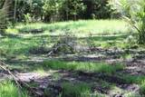 1861 Mohican Trail - Photo 2