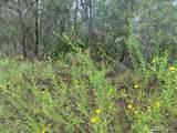 11335 Labrador Duck Road - Photo 1