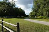 6987 Lecanto Highway - Photo 9