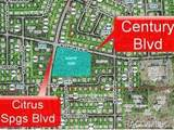 4631 Citrus Springs Boulevard - Photo 6