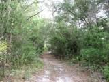 5854 Andri Drive - Photo 2