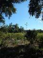15312 Rooster Crows Road - Photo 33