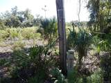 15312 Rooster Crows Road - Photo 35