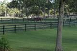 6374 Rio Grande Drive - Photo 20