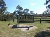 4461 Saddle Drive - Photo 5