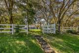 5634 Princewood Drive - Photo 7