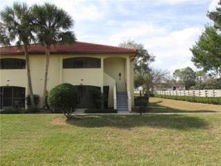 2326 Forest Drive, Inverness, FL 34453 (MLS #754325) :: Plantation Realty Inc.