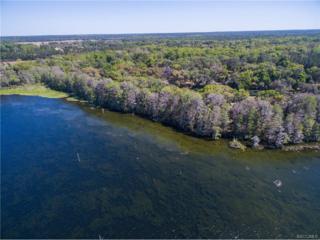 11120 N Citrus Avenue, Crystal River, FL 34428 (MLS #756667) :: Plantation Realty Inc.