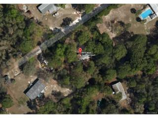 6870 W Vanaman Court, Crystal River, FL 34429 (MLS #756707) :: Plantation Realty Inc.