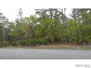 5427 N Sierra Vista Drive, Crystal River, FL 34428 (MLS #725918) :: Plantation Realty Inc.