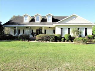 6615 N Paraqua Circle, Crystal River, FL 34428 (MLS #756456) :: Plantation Realty Inc.