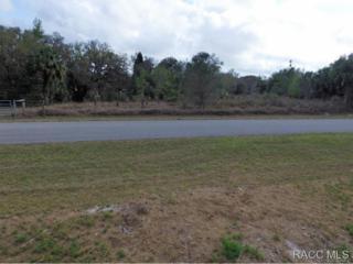 9200 W Wauchula Drive, Crystal River, FL 34428 (MLS #725303) :: Plantation Realty Inc.