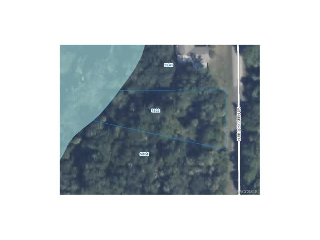 5822 N Brookgreen Drive, Crystal River, FL 34428 (MLS #750609) :: Plantation Realty Inc.