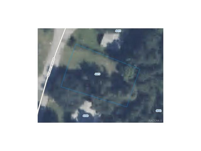 4073 N Eagle Nest Point, Crystal River, FL 34428 (MLS #750870) :: Plantation Realty Inc.