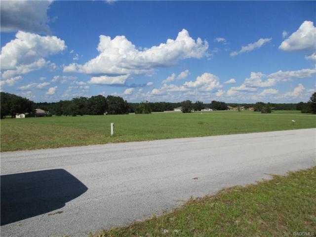 Hernando, FL 34442 :: Plantation Realty Inc.