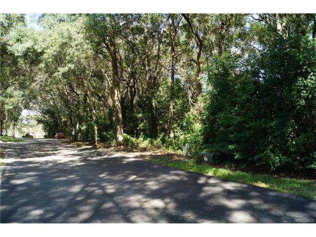 3505 N Woodgate Drive, Beverly Hills, FL 34465 (MLS #752253) :: Plantation Realty Inc.