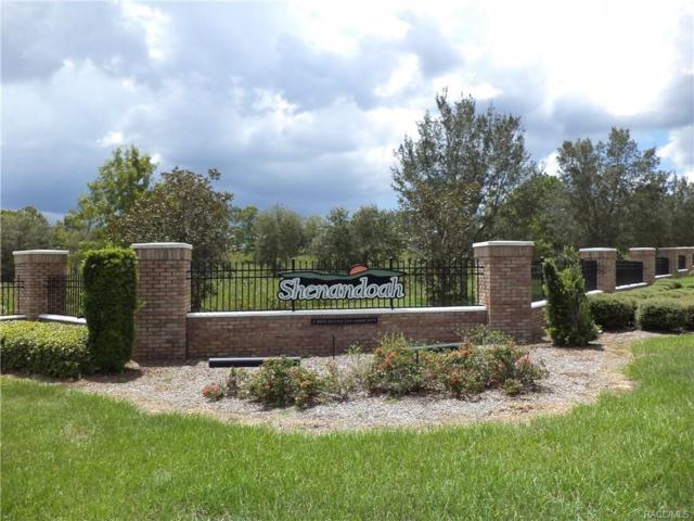 570 N Lake Shenandoah Loop, Inverness, FL 34453 (MLS #752890) :: Plantation Realty Inc.