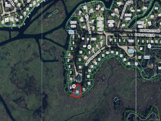 9312 E Mistwood Drive, Inverness, FL 34450 (MLS #752922) :: Plantation Realty Inc.