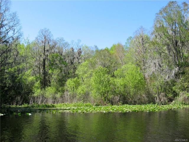 5435 W River Bend Road, Dunnellon, FL 34433 (MLS #753053) :: Plantation Realty Inc.