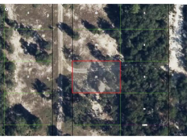 3601 S Cormorant Terrace, Inverness, FL 34450 (MLS #753492) :: Plantation Realty Inc.