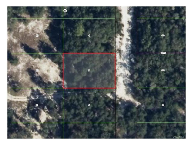 3568 S Chicory Terrace, Inverness, FL 34450 (MLS #753498) :: Plantation Realty Inc.
