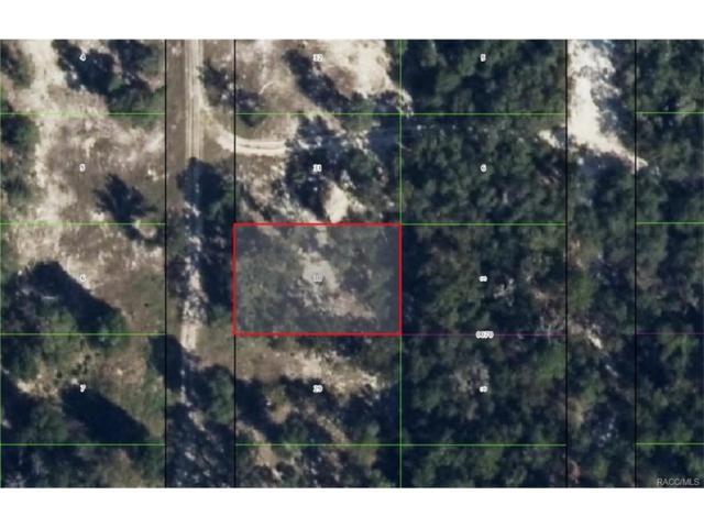 3611 S Cormorant Terrace, Inverness, FL 34450 (MLS #753500) :: Plantation Realty Inc.