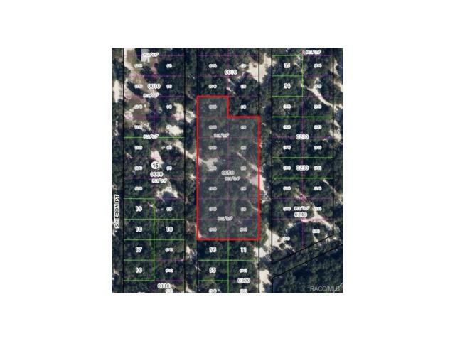 3658 S Pelican Avenue, Inverness, FL 34450 (MLS #753505) :: Plantation Realty Inc.