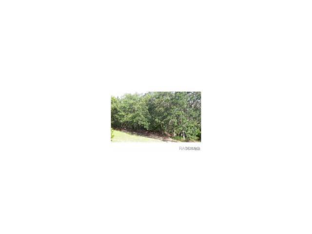 9348 E Mistwood Drive, Inverness, FL 34450 (MLS #753955) :: Plantation Realty Inc.