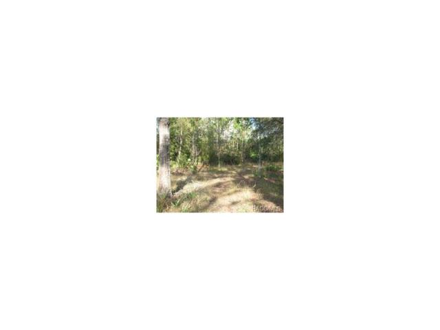 1017 S Fir Terrace, Inverness, FL 34450 (MLS #754002) :: Plantation Realty Inc.