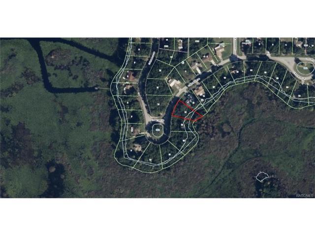 9350 E Mistwood Drive, Inverness, FL 34450 (MLS #754017) :: Plantation Realty Inc.