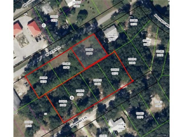 6662 W Yates Place, Crystal River, FL 34429 (MLS #754314) :: Plantation Realty Inc.