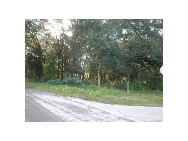 3418 W. Cypress Drive, Dunnellon, FL 34433 (MLS #756151) :: Plantation Realty Inc.