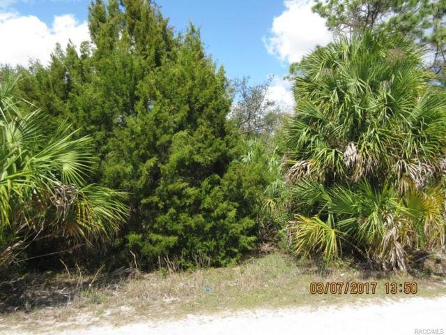 7855 W Pam Court, Homosassa, FL 34448 (MLS #756327) :: Plantation Realty Inc.
