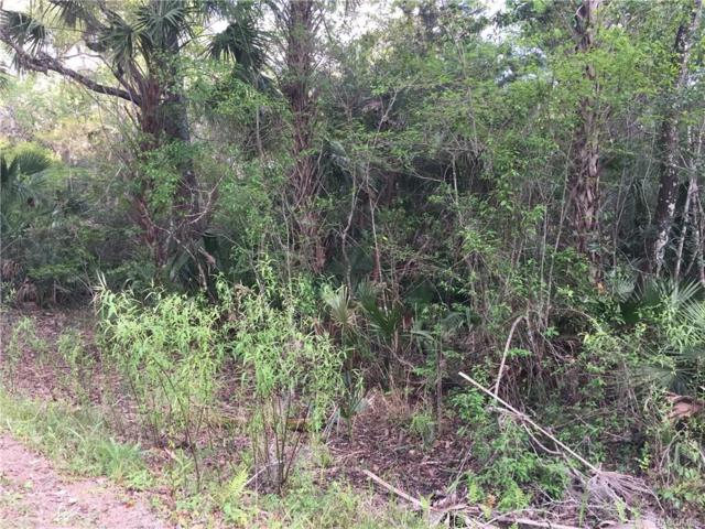 0 NW 1st Avenue, Crystal River, FL 34428 (MLS #756332) :: Plantation Realty Inc.