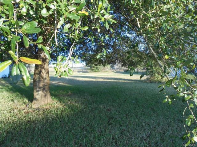 337 N Big Oaks Point, Lecanto, FL 34461 (MLS #757141) :: Plantation Realty Inc.