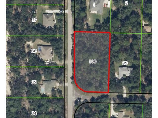 97 E Lancaster Street, Lecanto, FL 34461 (MLS #757192) :: Plantation Realty Inc.