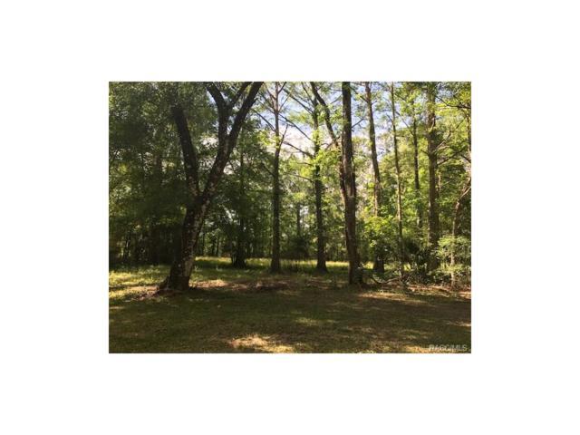 10584 N Silverlake Point, Dunnellon, FL 34434 (MLS #757393) :: Plantation Realty Inc.
