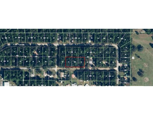 9621 W Cherokee Lane, Crystal River, FL 34428 (MLS #757419) :: Plantation Realty Inc.