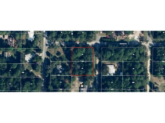 8410 N Pine Needle Terrace, Crystal River, FL 34428 (MLS #757441) :: Plantation Realty Inc.