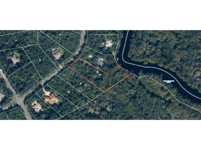 10454 N Natchez Loop, Dunnellon, FL 34434 (MLS #757487) :: Plantation Realty Inc.
