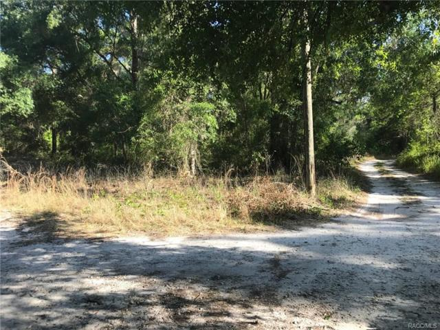 4195 S Spaniel Trail, Inverness, FL 34450 (MLS #757509) :: Plantation Realty Inc.
