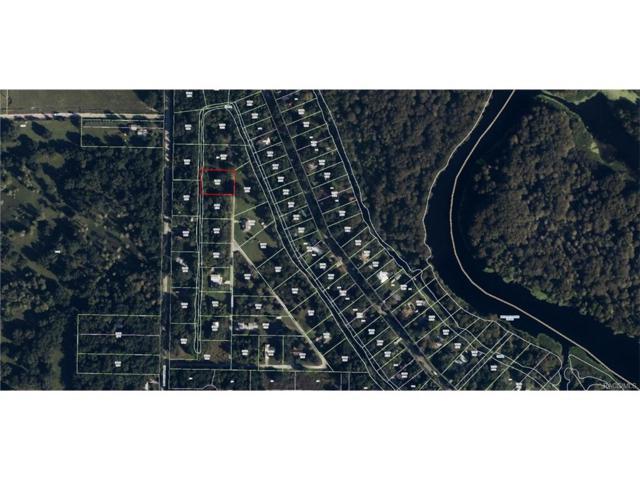 384 N Staff Point, Inverness, FL 34450 (MLS #757701) :: Plantation Realty Inc.